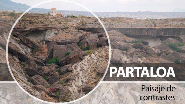 Partaloa