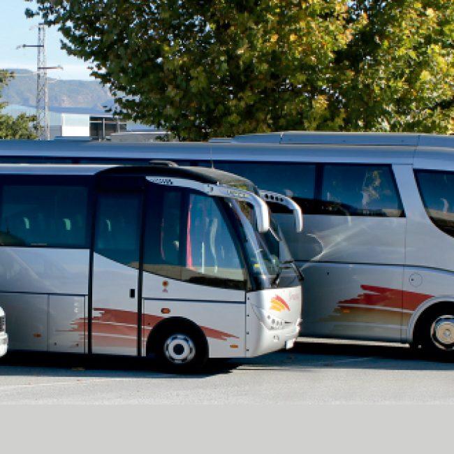 Bonachela Coach Services