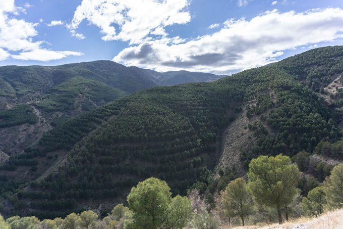 Vista de la Sierra de los Filabres