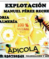 Honey of Oria Manuel Perez Reche